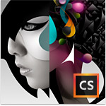 Creative Suite 6 Design Standard - License