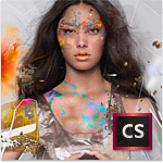 Creative Suite 6 Design and Web Premium - Back-up CD/DVD